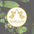 Shaolin Studio