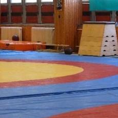 Gerevich Aladár Nemzeti Sportcsarnok