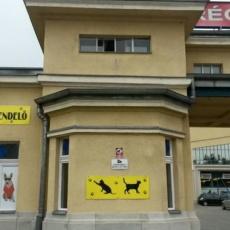 LaserVet Állatorvosi Rendelő - Récsei Center